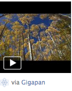 Gigapan embedded on Facebook